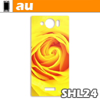 AQUOS PHONE SERIE mini SHL24用スキンシール | au | Sharp